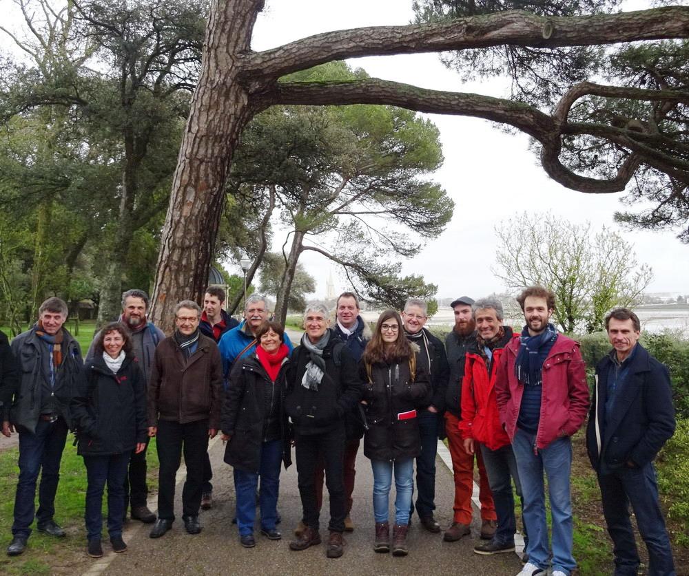 experts de l'arbre du GECAO
