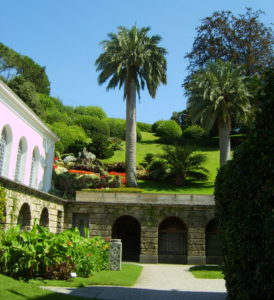 arbres des parcs et jardins