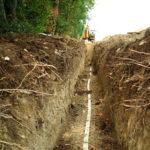 arbres et tranchées réseaux enfouis